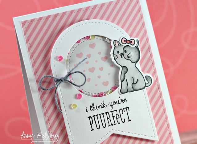 Purrfect2