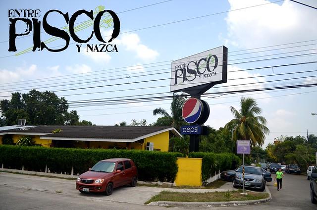 pisco30