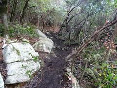 Vues du sentier vers Ranedda après aménagement et ratissage Marie-Jeanne