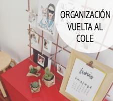 Organizacion-vuelta-cole
