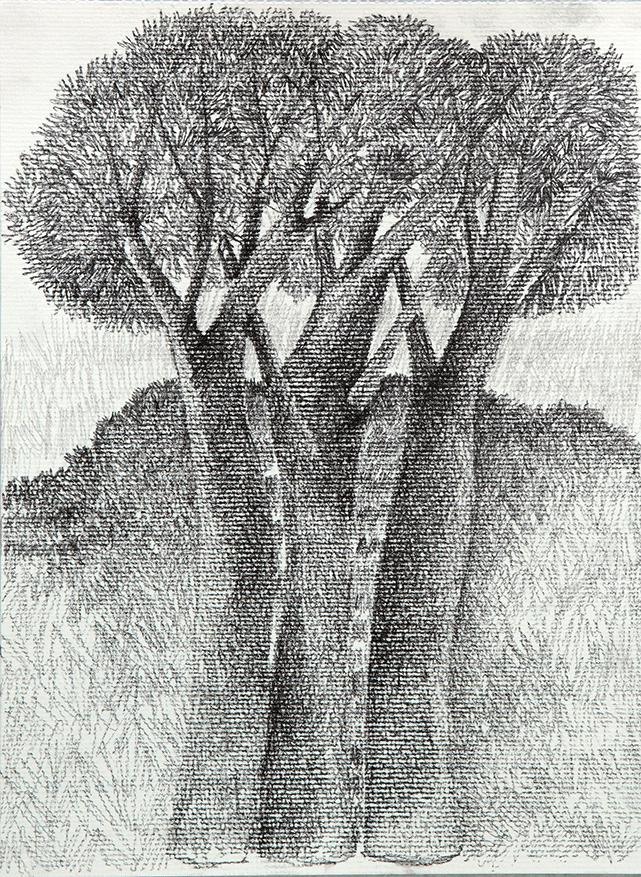 « Paisaje del Alma » de Sonia Etchart. La Sala Artegalería.