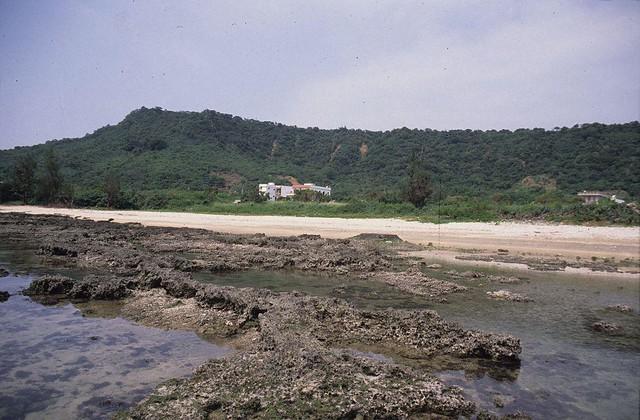 圖。6 1992年萬里桐潮間帶。背景為悠活度假村未開發之前的景象(趙世民攝)