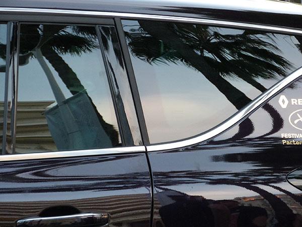 voiture et palmier