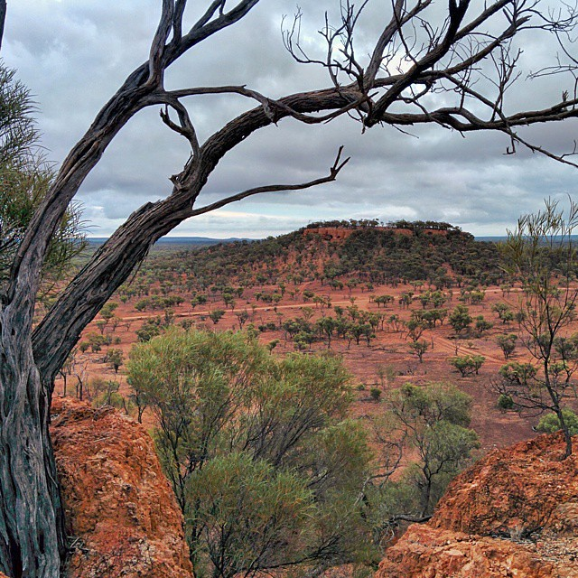#view from Baldy Top, Quilpie, QLD.