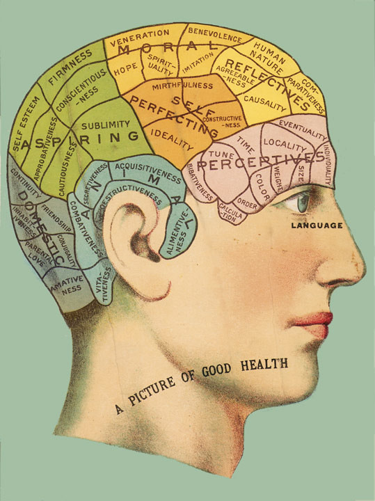 Phrenology    Head    Chart   This phrenology chart showing the
