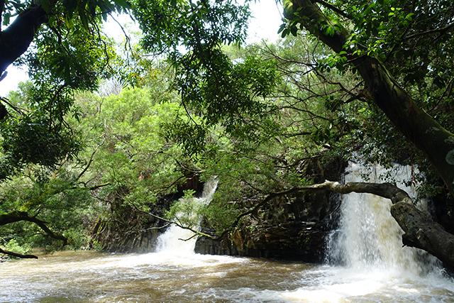maui twin falls