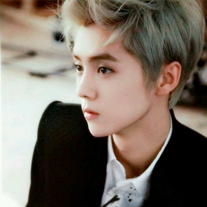 my new dp~i love luhan with silver hair~ | my new dp~i ...