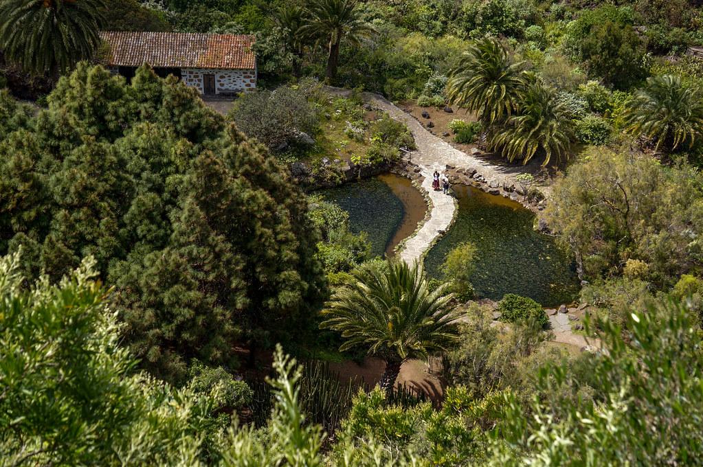 Jard n bot nico canario viera y clavijo gardentraveller flickr - Jardin botanico canario ...