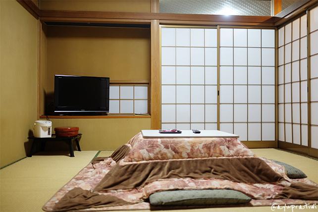 Japan Diary 2015 Disney Sea Kawaguchi 8