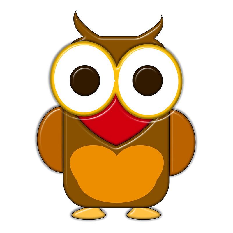 Benim Baykuşum - Ⓒ
