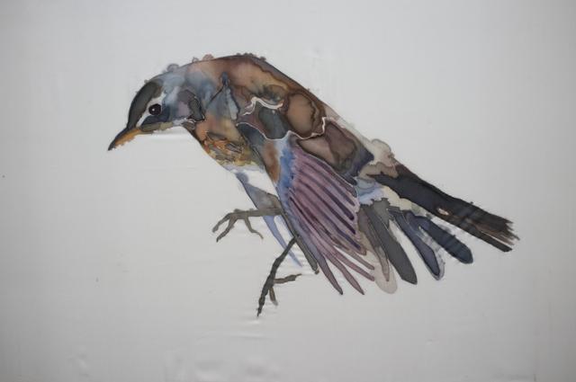 GH Birds 6