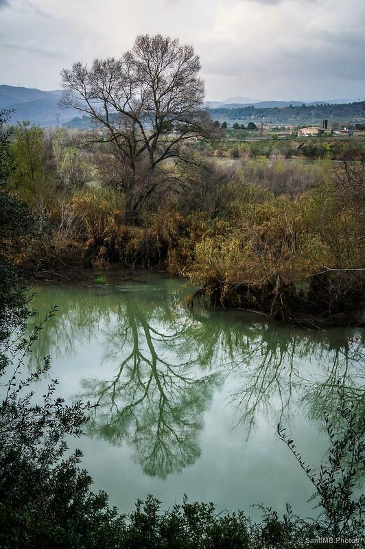 Árbol reflejado en el agua del Galatxo de Sovarrec