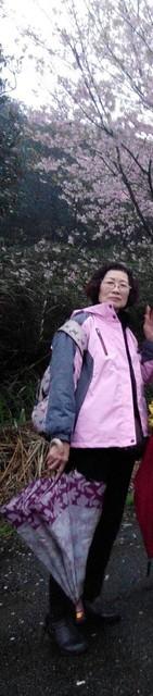 17628郭太太
