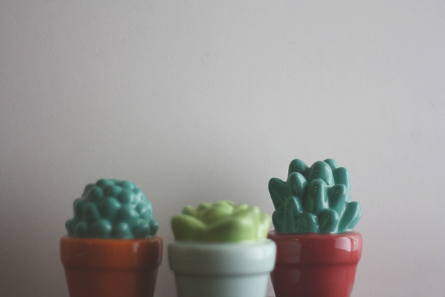 fauxsucculents1