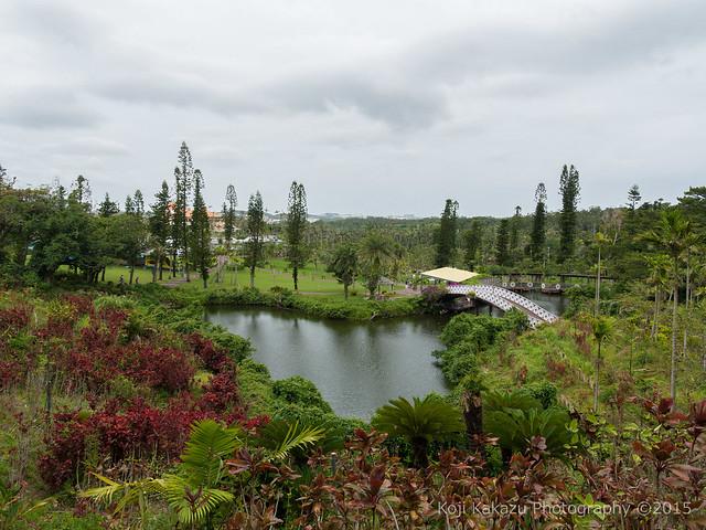 東南植物楽園-37
