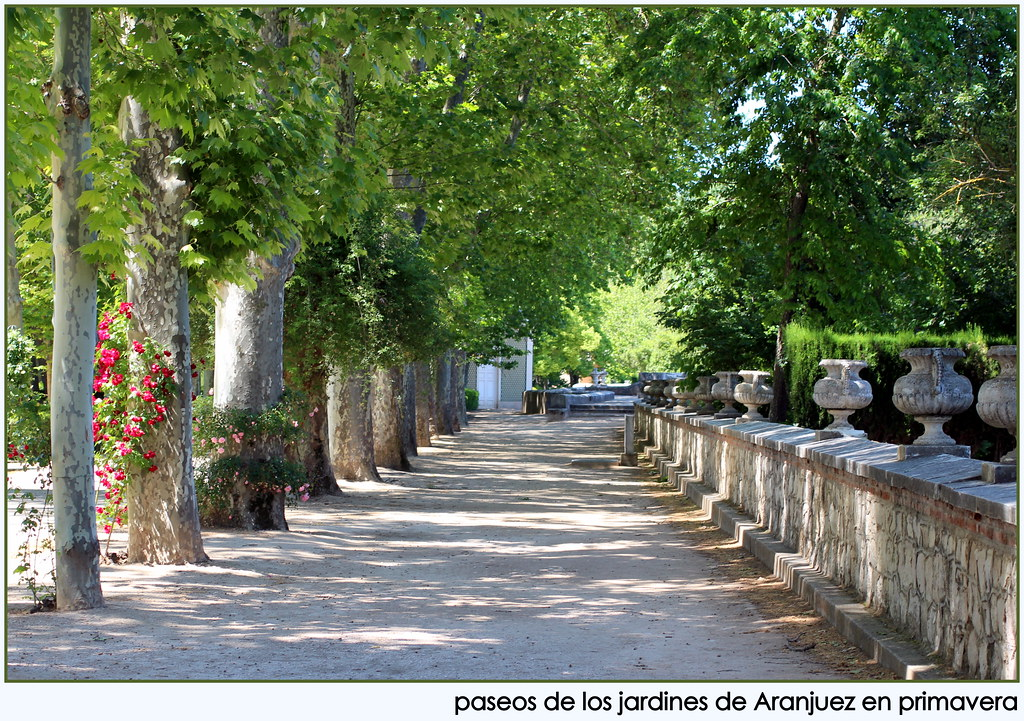 Jardines de aranjuez jardines de aranjuez a mediod a m for Bordillos de hormigon para jardin