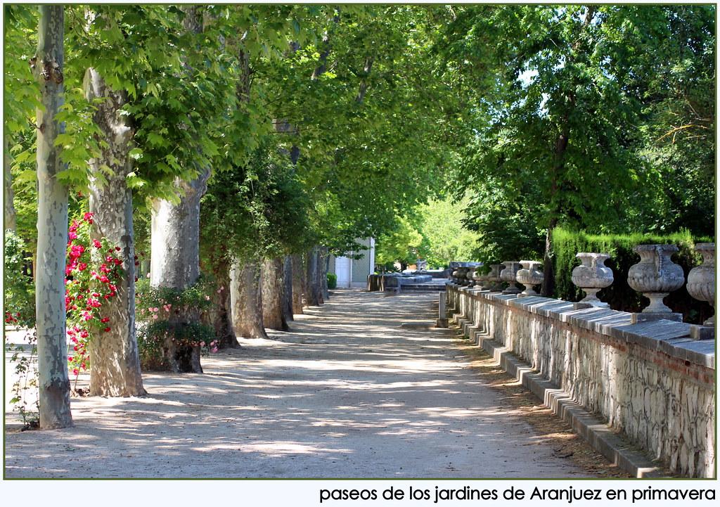 Jardines de aranjuez jardines de aranjuez a mediod a m - Fotos de jardines ...