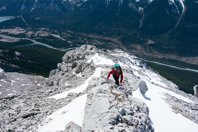 Scrambles - Mt. Lawrence Grassi 2015-5