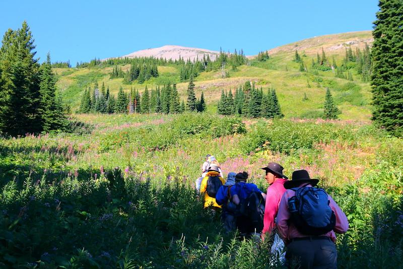IMG_8294 Firebrand Pass Trail, Glacier National Park