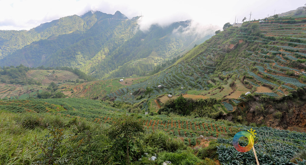 SITIO LA PRESA: Will Tourism Destroy its Natural Beauty? #LaParusa #Forevermore (A Case Study)