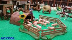 Playmobil Medieval Peñafiel. ACYCOL