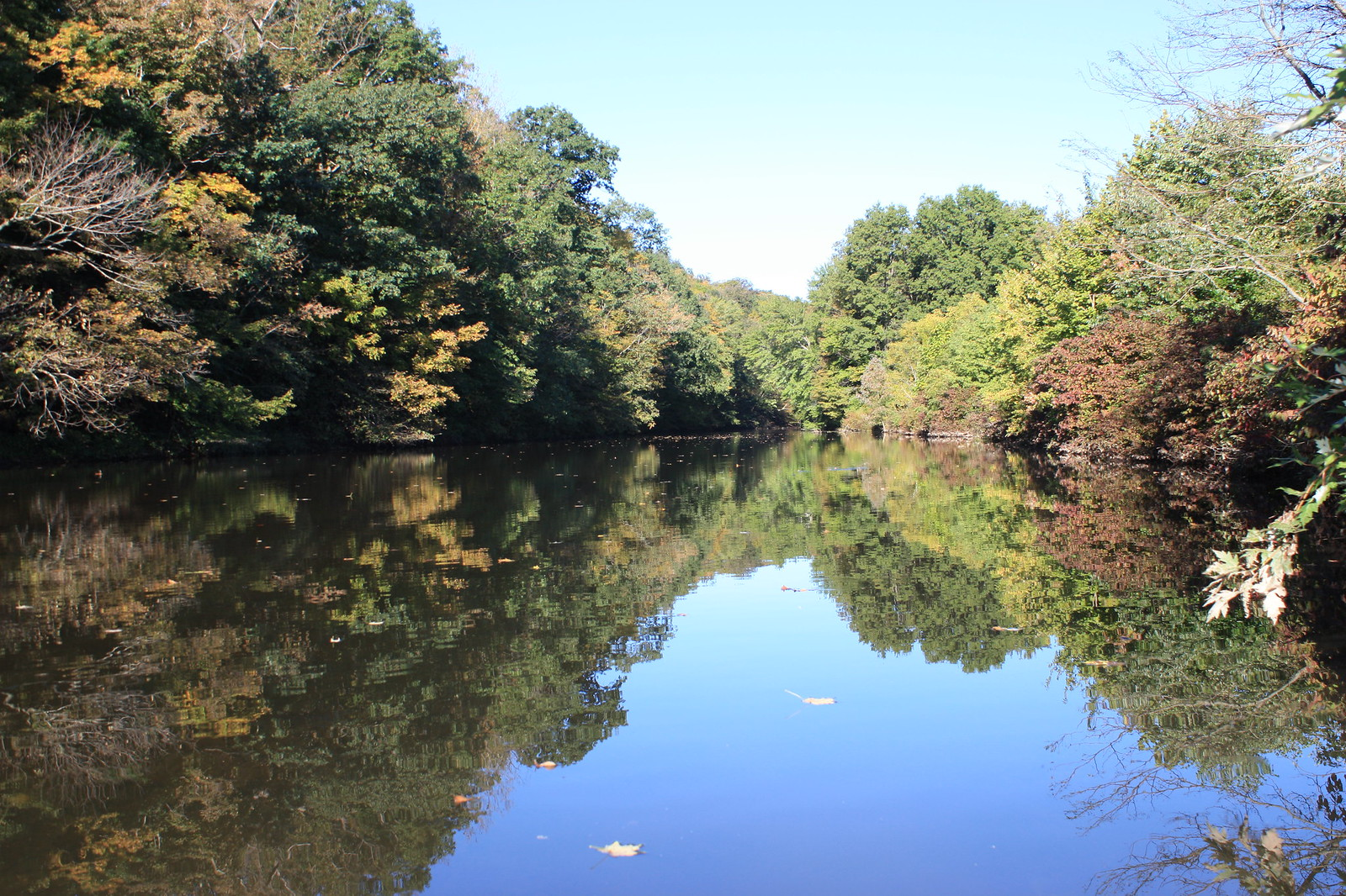 Perkiomen Creek | by Montgomery County Planning Commission