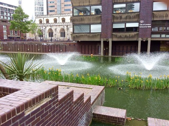 Barbican Irises