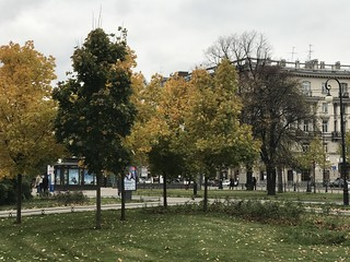 Снимок с Apple iPhone 7 Plus 56 мм