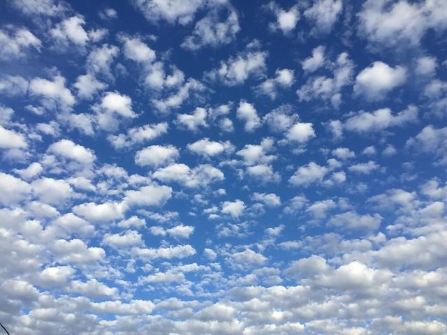 Fall Sky #2