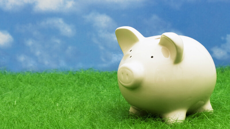 White piggy bank on grass with blue sky