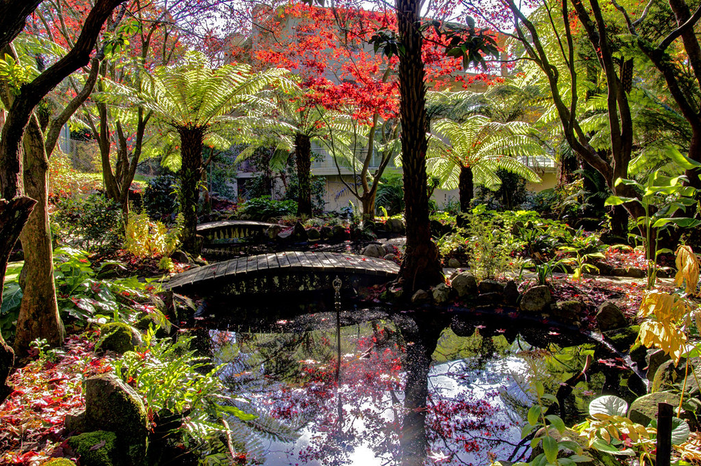 garden pond 1 melbourne alfred nicholas memorial