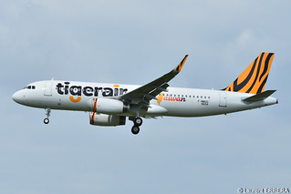 Airbus A320-200 Tigerair Taiwan (TTW) F-WWDG - MSN 6604 - Will be B-50006