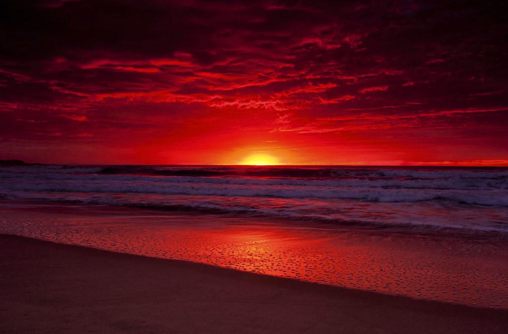 Manly Sunrise