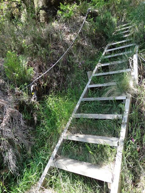 Escaleras en el PR-G 147 As Fragas da Ribeira e Lostegal
