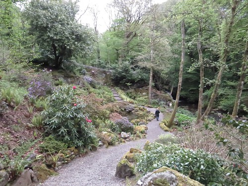 459 Path to the Afon Cadnant