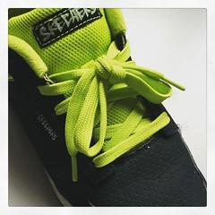 shoelaceinside