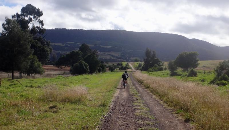 Omara's Road