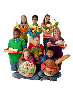 Food Groups And Guidelines For Babies And Toddlers