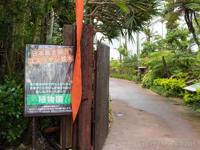 東南植物楽園-192