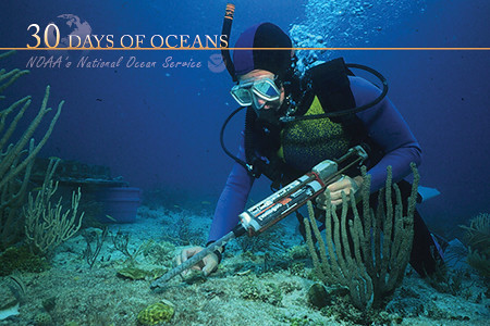 how to become a oceanograph