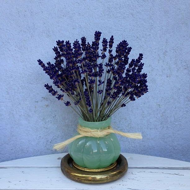 Dried lavender in little green glass vase with a piece of … | Flickr