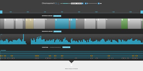 Chromosome browser