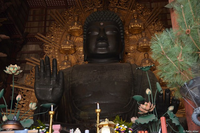 DSC_3082 größter sitzender Bronzebuddha der Welt in Nara