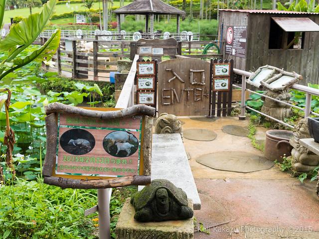 東南植物楽園-124