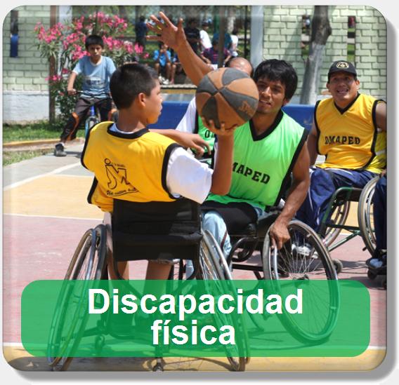Icono discapacidad física