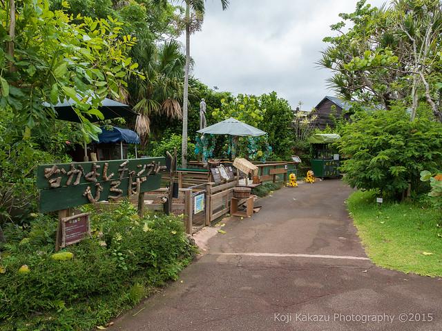 東南植物楽園-62