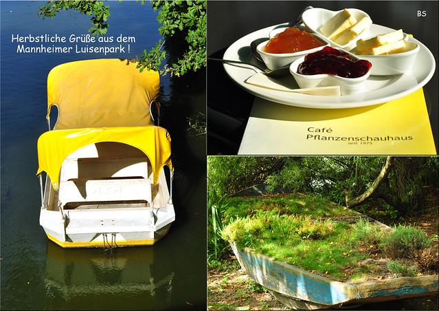 Herbstliche Grüße aus dem Luisenpark Mannheim ... Fotos und Collagen: Brigitte Stolle 2016