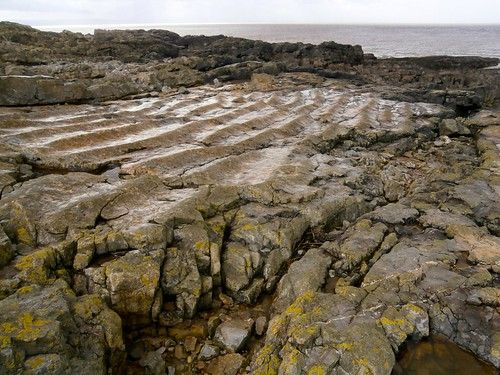 2 Fossil sea bed ripples, Flat Holm beach, 10-16