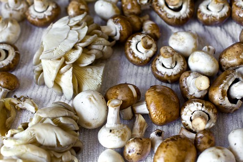 a mix of mushrooms | by smitten kitchen