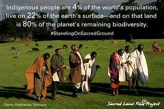 Photo of Sacred Land Film Project Meme